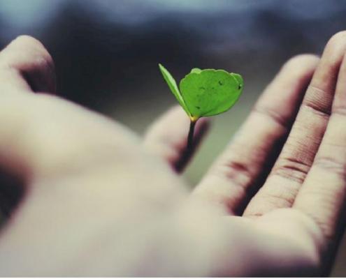 engagement éco-responsable et consommer écologique
